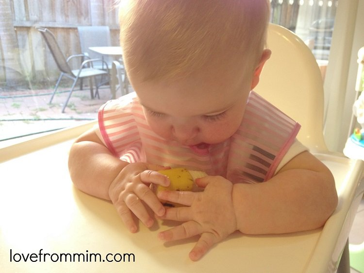 Baby Led Weaning First Foods - Love from Mim