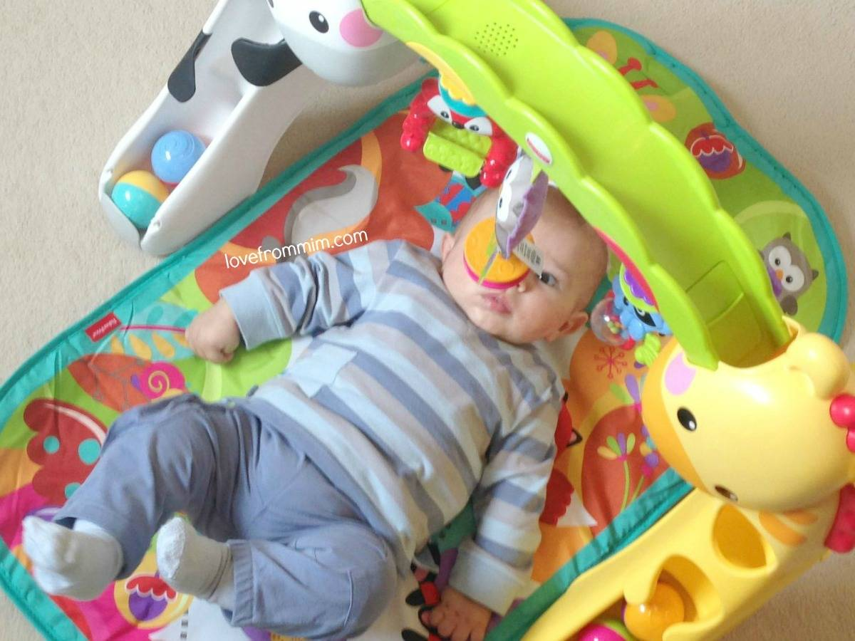Fisher-Price Newborn to Toddler Gym Review - lovefrommim.com Fisher Price Play Gym Baby Play Gym Fisher Price Toddler Play Gym