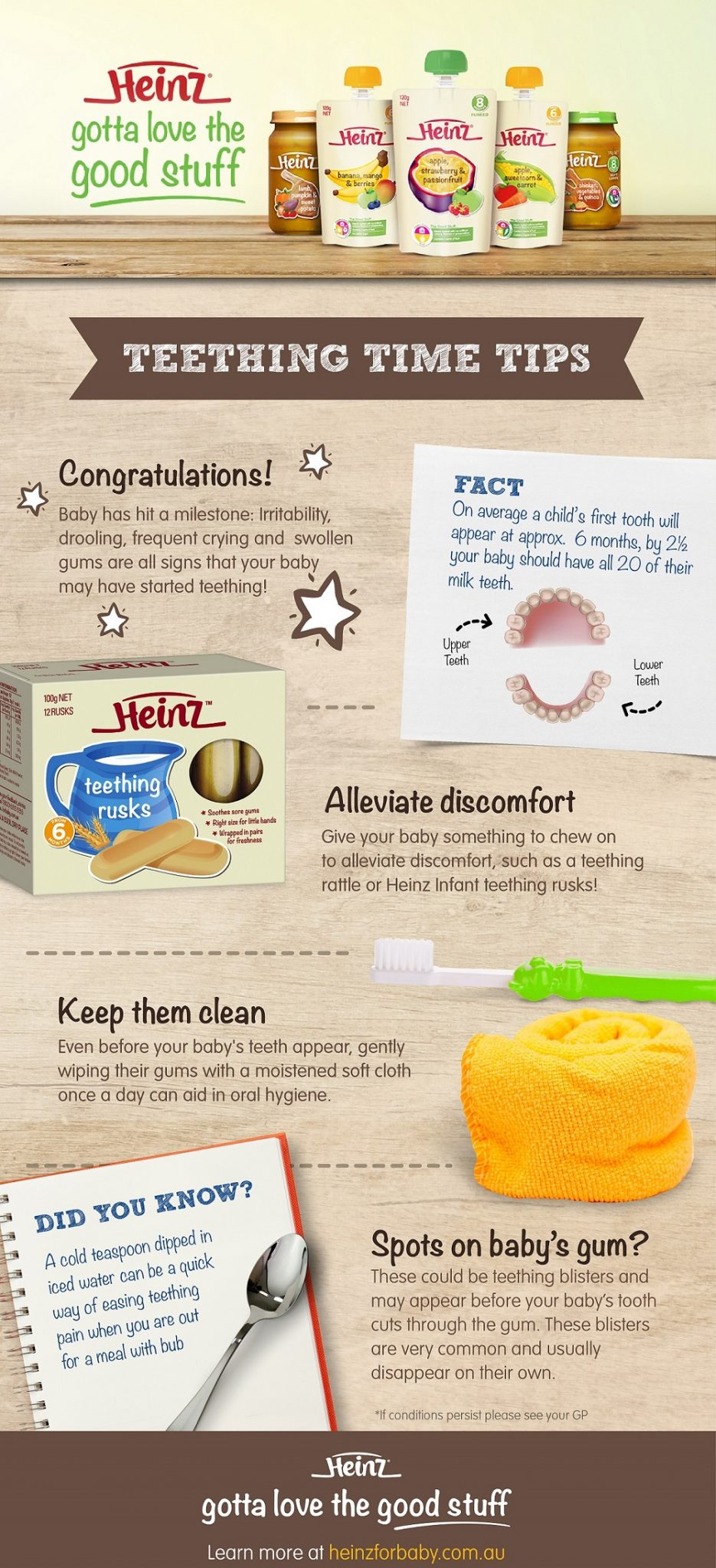 How to start Solid Foods with your Baby Teething Time Tips