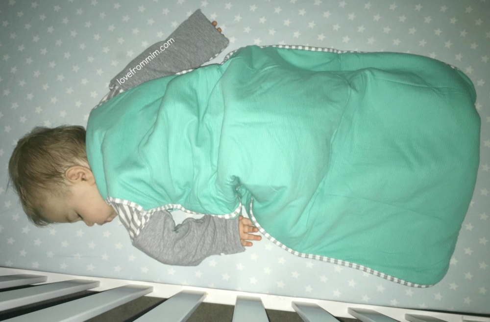 Love To Dream Nuzzlin Sleep Bag Review Love From Mim
