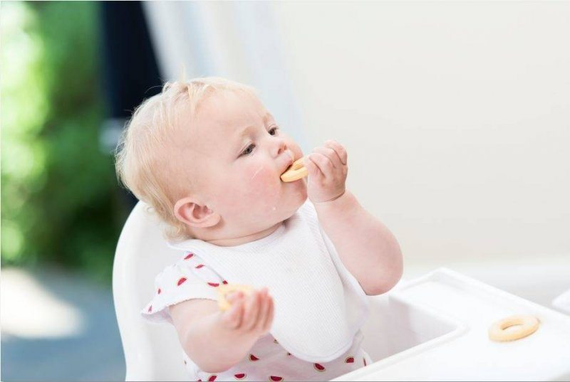 Baby eating a biscuit