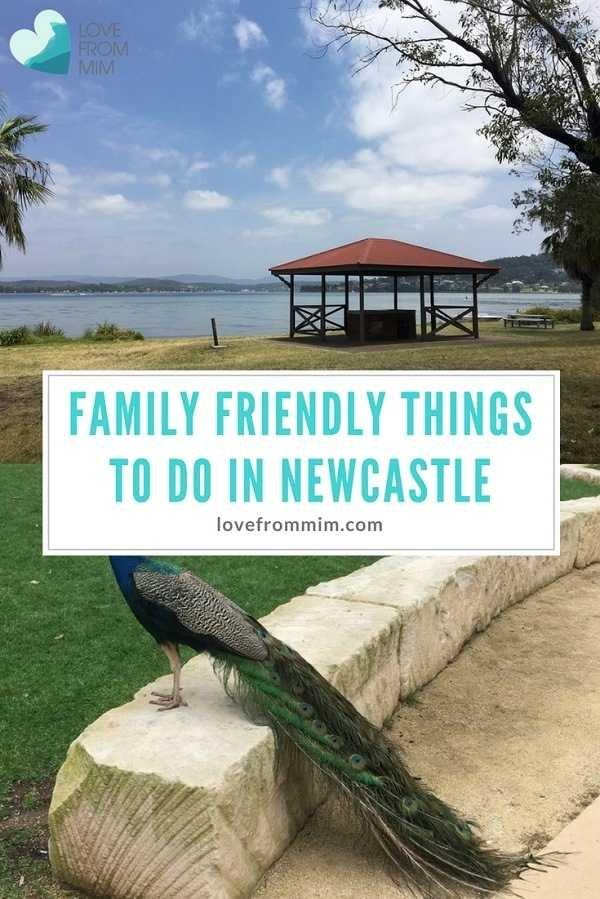 5 Family Friendly things to do in Newcastle! Love from Mim