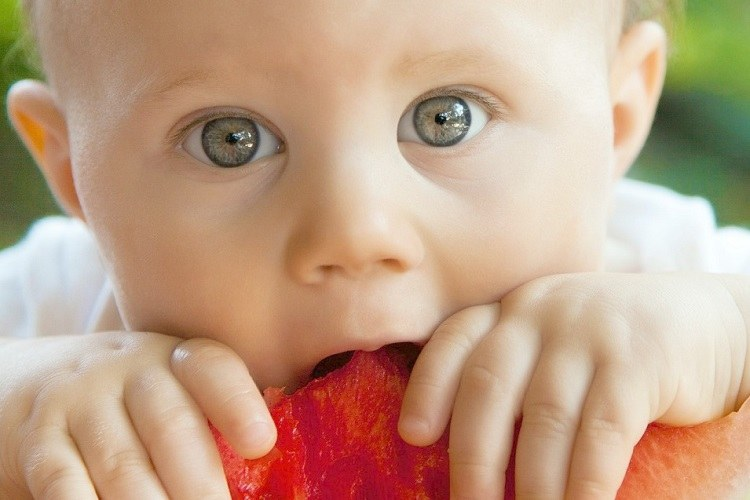 How to do Baby Led Weaning + Free Guide! Love from Mim
