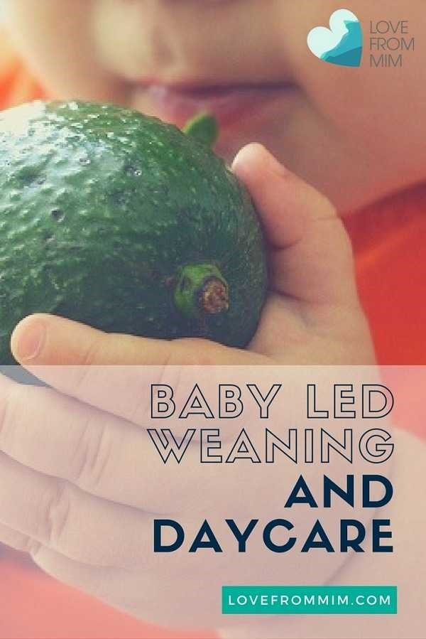 Baby Led Weaning and Daycare - how to manage the process to get your daycare on board to do Baby Led Weaning - Love from Mim How to get your day care on board with Baby Led Weaning Baby Led Weaning and Daycare - Love from Mim BLW and Daycare How to get Day Care to do Baby Led Weaning