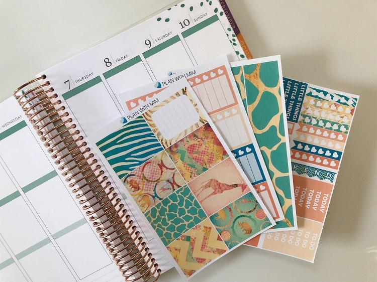 Where to Find & Use the Best Printable Planner Stickers - Down in Africa from Paper Planner Club