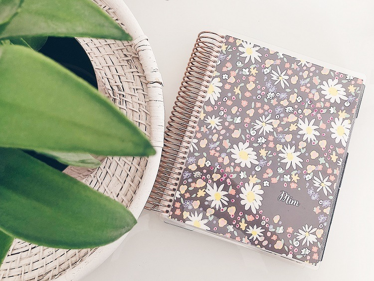45922464594a 15 Absolute Best Planners for Moms 2019!
